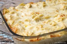 Easy and delicious Cheesy Chicken Tetrazzini - Chicken and pasta in a creamy sauce with lots of flavor - a family favorite dinner meal! Pasta Dishes, Food Dishes, Main Dishes, Rice Pasta, Casserole Dishes, Casserole Recipes, Chicken Tetrazzini Recipes, Chicken Tetrazinni, Cheesy Chicken Recipes
