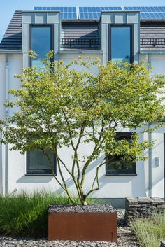 Wershofen Garden Design, Corten Planter, private garden - All For Garden Urban Garden Design, Contemporary Garden Design, Contemporary Landscape, Landscape Architecture Design, Landscape Designs, Landscape Plans, Modern Front Yard, Traditional Landscape, Plantation