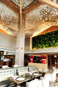Forest Restaurant (Chinese): 8 Sentosa Gateway Level 1 Equarius Hotel Resorts World Sentosa Tel: +65 6577 7788 Daily: 12pm – 2.30pm, 6pm – 10.30pm Sunday Brunch: 11.30am – 4pm