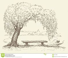 Old Bench Under A Willow Tree By The Lake Royalty Free Stock ...