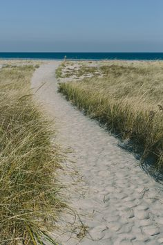 Beach Trail by North Sky Photography