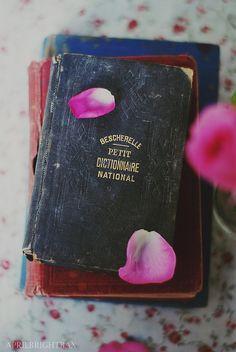 small vintage books by April BrightBax, via Flickr