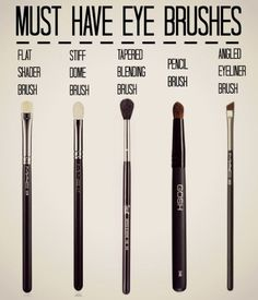 Must Have Eye Brushes from Beautiful With Brains ~Renee