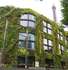 Quai Branly Museum (Paris/ France): http://curious-places.blogspot.co.nz/2011/03/quai-branly-museum-paris-france.html