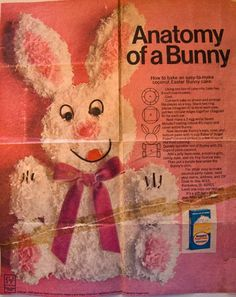 I was born on Easter and my sister started making this bunny cake for me when I was 6 or 7. She still has the original add from the  newspaper. I won't say how old I am but that's a lot of bunnies!