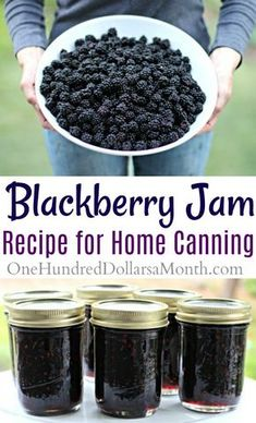Canning How To Make Blackberry Jam One Hundred - But We Still Had A Huge Bowl Of Blackberries Left Over So I Popped Them In The Freezer Last Night And Made A Batch Of Blackberry Jam This Morning After Breakfast Blackberry Jam Is One Of Those Funky Canning 101, Home Canning, Canning Recipes, Canning Salsa, Seedless Blackberry Jam, Blackberry Jam Recipes, Homemade Blackberry Jam, Blackberry Jelly Recipe With Sure Jell, Black Raspberry Jam Recipe