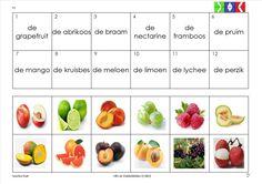 mini loco fruit 11