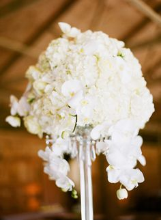 Tall White #Hydrangea #Orchid Centerpiece | Katie Stoops Photography | See the wedding on SMP -- http://www.StyleMePretty.com/little-black-book-blog/2014/01/02/rustic-glam-murray-hill-barn-wedding/