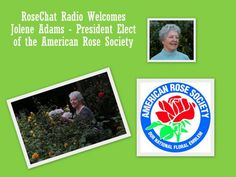 American Rose Society President - Jolene Adams - Awesome Interview   http://www.blogtalkradio.com/rosechat/2012/06/23/rose-chat-radio @American Rose Society