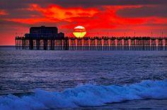 silhouettes against california sunset