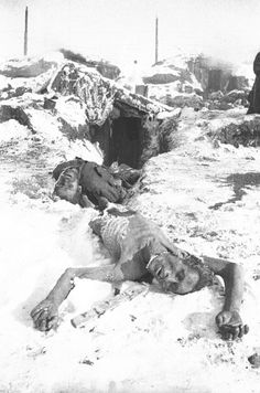 Gruesome. Russian POWs who had been trapped inside Staingrad along with the Germans, found starved to death after the Red Army broke through in 1943.