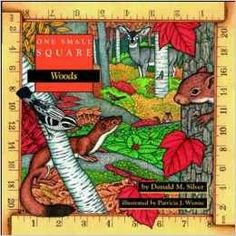 One Small Square - this series  makes a great one week nature study block for homeschooling ⋆ Waldorf-Inspired Learning
