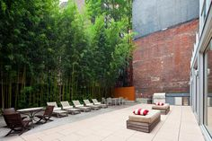 Rooftop Gardens & Terraces New York City - Interior Foliage Design