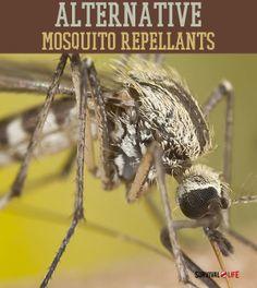 Alternative Mosquito Repellants   #SurvivalLife www.SurvivalLife.com