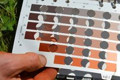 A geologist using a Munsell soil color chart on a wine vineyard