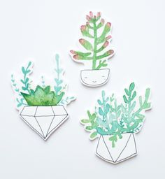 Succulent Brooches — Andsmile Studio | Illustration and handmade goodies