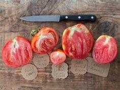 Learn the art of saving heirloom tomato seeds to grow again next season.