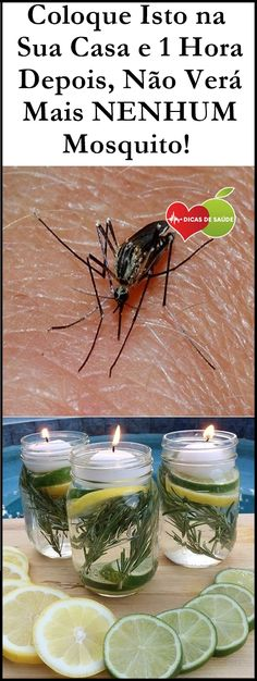 Put This In Your Home and 1 Hour Later You Will See No More Mosquitoes! Mata Mosquito, Listerine, Clean House, Food Videos, Pedicure, Cucumber, Helpful Hints, Christmas Diy, Hacks