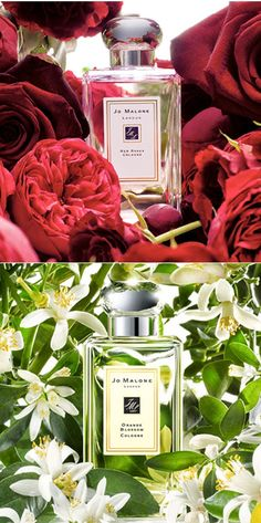 My favorite Jo Malone combo - Red Roses & Orange Blossom