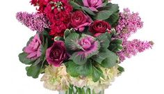 Admin Professionals Day is TOMORROW, Apr 27th: Don't delay, call today! 615.297.2092 https://www.linkedin.com/pulse/admin-professionals-day-tomorrow-apr-27th-let-them-know-saunders?published=u #NashvilleFlorist #SayItwithFlowers