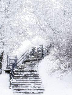 snow   http://bestscenicviews.blogspot.com