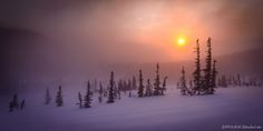 """""""Winter Dreams"""" Hallett's Peak, Rocky Mountain National Park. Blowing snow and sunrise on the side of Flattop Mountain."""