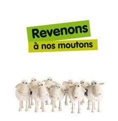 """Revenons à nos moutons!"""" = Reprenons le sujet dont on parlait!"""