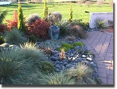 Small xeriscape bed is colorful and adds some architectural interest to the space. #xeriscape