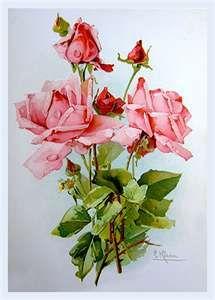 Vintage Print Pink Roses Rose Flowers Catherine Klein Shabby