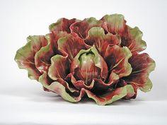 Katherine Houston porcelain cabbage