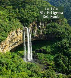 Esta es la famosa isla prohibida de Brasil, Ilha de Queimada Grande