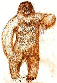 Mapinguari - uma criatura coberta de um longo pêlo vermelho vivendo na Floresta Amazônica. Quando ele percebe a presença humana, fica de pé e alcança 2m de altura. Seus pés seriam virados ao contrário, suas mãos possuiriam longas garras e a criatura evitaria a água, tendo uma pele semelhante a de um jacaré. Possuiria um cheiro horrível, que faz com que sua presa fique tonta, o que permite ao bicho apanhá-la com facilidade. A boca do Mapinguari se abre na vertical, e vai do peito até a…