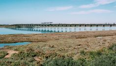 Caminar respirar aire limpio y desconectar. A veces un simple paseo puede cambiar por completo tu día. Última foto de la rutilla de senderismo por los Toruños (3/3)   Tags abajo   #JuanlyLM #LosToruños #PuertoReal #fotografia #photography #Canon #canonphotography #naturephotography #naturelovers  #natura #Nature #Natureza #Naturaleza #paisaje #paisagem #landscape #landscaper #viveramarviajar
