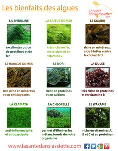 bienfaits_algues Healthy Nutrition, Best Self, Permaculture, Agriculture, Detox, Healthy Lifestyle, The Cure, Vitamins, Health Fitness