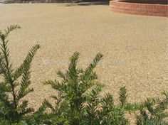 RonaDeck Resin Bound Surfacing laid by @Oakleighmano