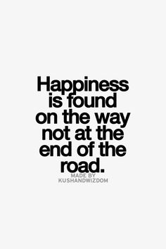 There is no goal that can be met to give lasting happiness. Enjoy the journey and don't think too hard about the future.