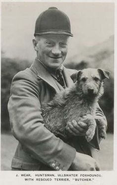 Walter Gardner About the Border Terrier - Google Search