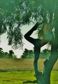 Yoga in a tree