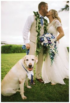 Just before sunset near the edge of a small cliff overlooking the beautiful water of Kapalua Bay at the Montage Resort in Maui, Scott and Dara exchanged vows in front of their closest friends and family - and their adorable furry ring bearer! Anna Kim Photography was there to capture the beautiful cobalt blue details of their ceremony and gorgeous reception, complete with an HD video dance floor and a surprise that brought tears to Dara's eyes.