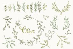 Olive Branch Clip Art & Vectors by The Pen & Brush on Creative Market Wrist Tattoos, Small Tattoos, Tatoos, Clipart, Olive Branch Tattoo, Branch Drawing, Wreath Drawing, Laurel Wreath, Little Designs
