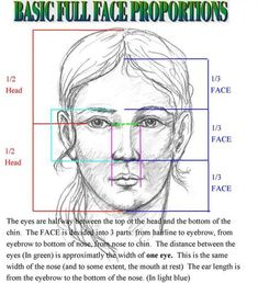 how to draw human face proportions Facial Proportions, Face Proportions Drawing, Pencil Art Drawings, Drawing Faces, Drawing Drawing, Realistic Face Drawing, Eye Drawings, Human Drawing, Drawing Hair