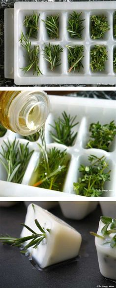 Preserve left over herbs in oil - The perfect way to keep them so they can go from freezer right to frying pan.