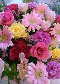 Love Rose Flower, Beautiful Rose Flowers, Beautiful Flower Arrangements, Amazing Flowers, Pretty Flowers, Flower Art, Pink Flowers, Floral Arrangements, Purple Flowers Wallpaper