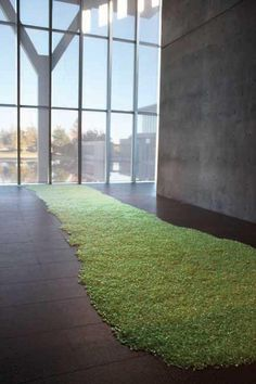 Biophillia @ Felix Gonzalez-Torres installation 'grass' made of green candles individually wrapped in cellophane