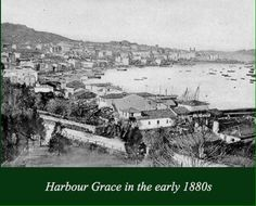 Harbour Grace in the early By that time, my family had already been there for over a century. Newfoundland Canada, Newfoundland And Labrador, Salt And Water, Past Life, Genealogy, Paris Skyline, The Incredibles, Organization, Island
