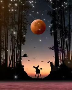 good night videos i love you ; good night videos for him ; Beautiful Photos Of Nature, Beautiful Nature Wallpaper, Beautiful Fantasy Art, Beautiful Moon, Nature Pictures, Good Night Gif, Good Morning Gif, Good Night Image, Good Night Moon