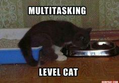 Multitasking... Lol