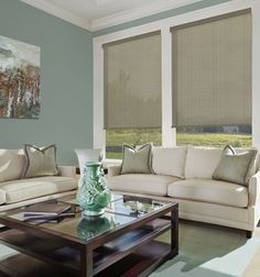 Lustrous Solar Shades feature openness, which will help block harmful UV rays while still mildly preserving your view. Motorized Blinds, Solar Screens, Solar Shades, Home Safety, Window Treatments, Windows, Boutique, Room, Child