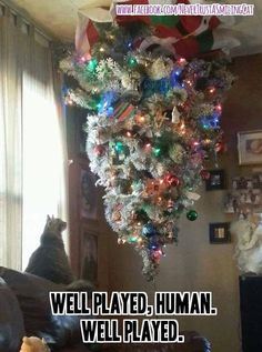 Well played human!