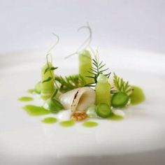 Scallop, peas, mustard seeds and cucumber by Max Goldberg http://chefs-talk.com/show/scalloppeamustard-seedcucumber